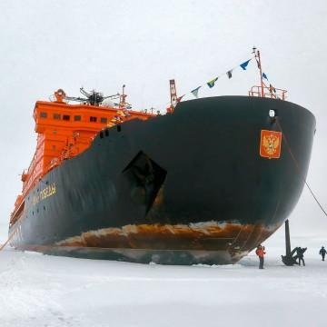 Арктически уникальный