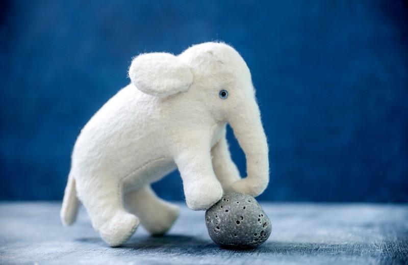Как из слона сделать муху?
