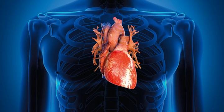 Наука|Медицина