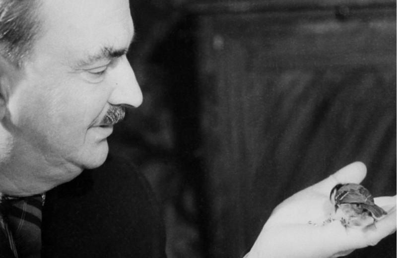 «Дед говорил, что был во всех тюрьмах Москвы и Ленинграда»