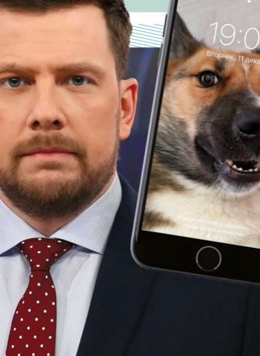 Александр Колтовой: Что в моем телефоне?