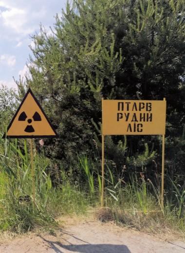 Во власти радиации