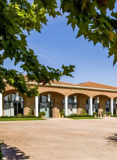 Винодельня Torres, Испания