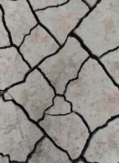 Землетрясение: успеть спастись