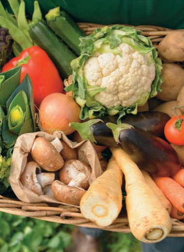 Аграрии уходят от химии в биоземледелие