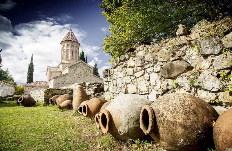 8000 лет назад… научились делать виноградное вино