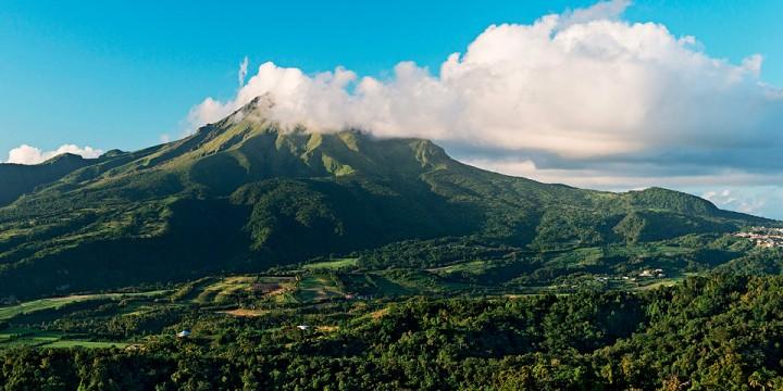 Мартиника вбокале