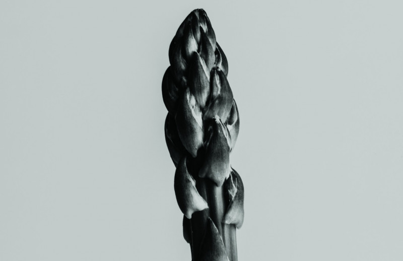 Аморфофаллус/Amorphophallus
