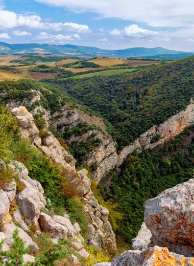 Терра Нова для Азербайджана