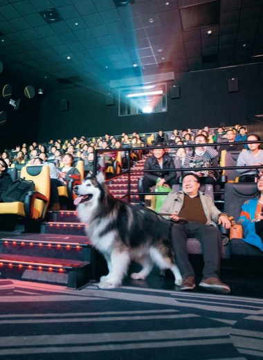 Кино с китайской спецификой