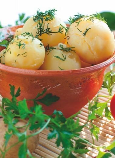 Худеем на картошке
