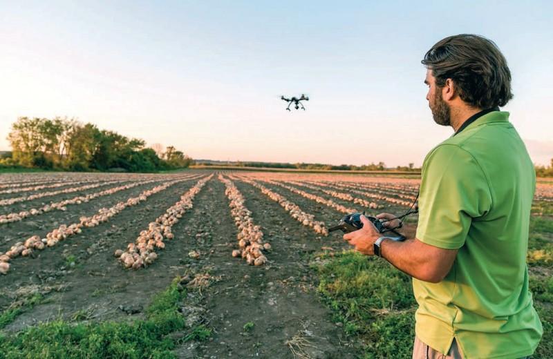 Агропром будущего: функциональная еда, биопродукты и интернет вещей