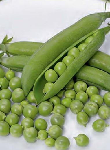 Нежнейший, вкуснейший, милейший из овощей