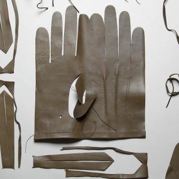 Свои пять пальцев