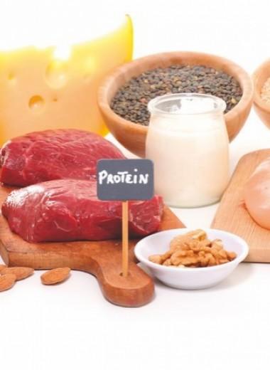 7 вопросов о белке