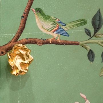 Птичьи права