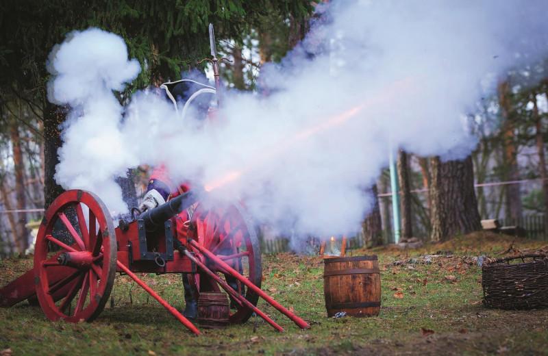 Прабабушка русской артиллерии