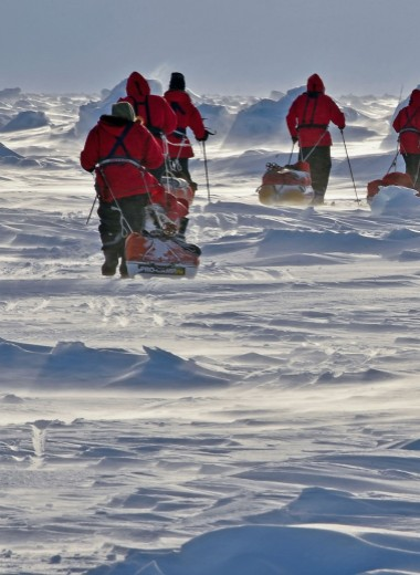 «Арктику нельзя покорить»
