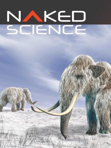 Naked Science №10 октябрь