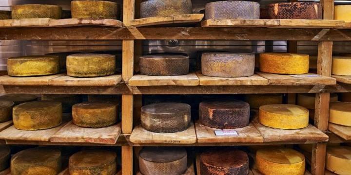 Сырозамещение. Российские производители сыра пока немного выиграли от запрета на импорт