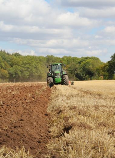 Путь в современное фермерство