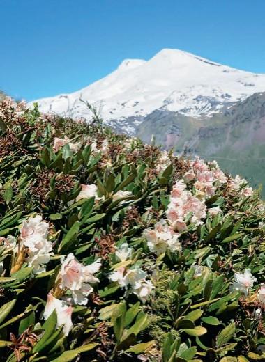 Первопроходец «Абхазских Альп»