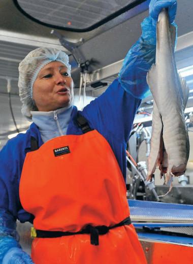 Рыба ждет покупателя