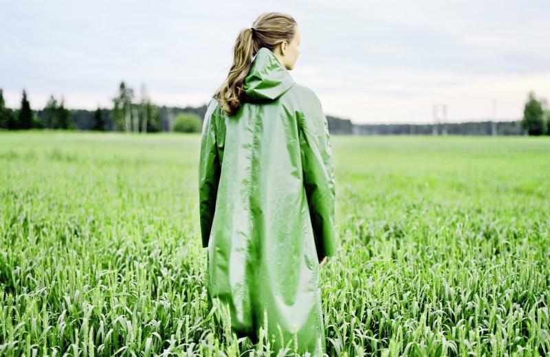 Зеленый шум