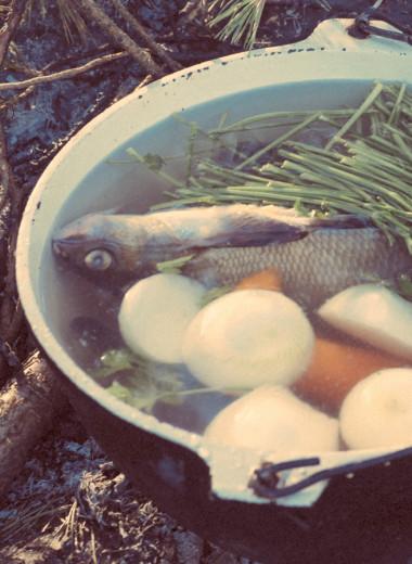 Рыбные души