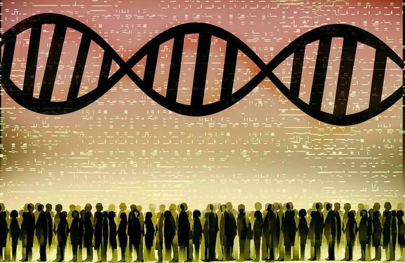 «Эволюция должна иметь направленность»