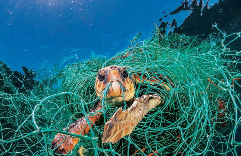 За Полинезию без пластика