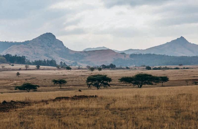 Африка без маски