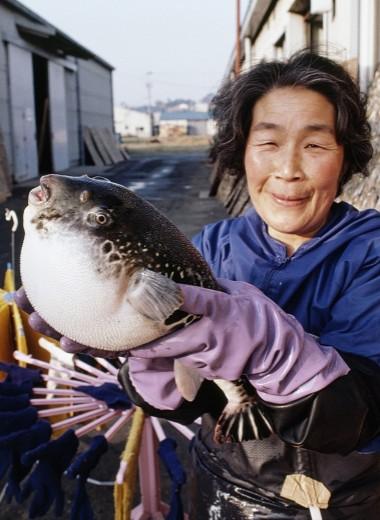 Япония: Смертельное счастье