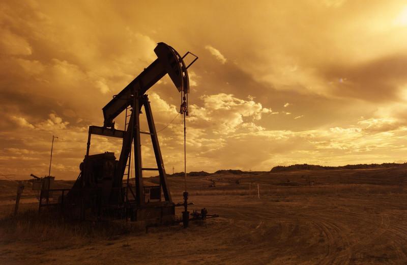 «Роснефть»: импортозамещение