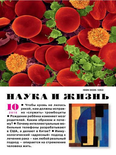 Наука и жизнь №10 октябрь