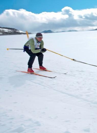 Скиджоринг: спорт викингов