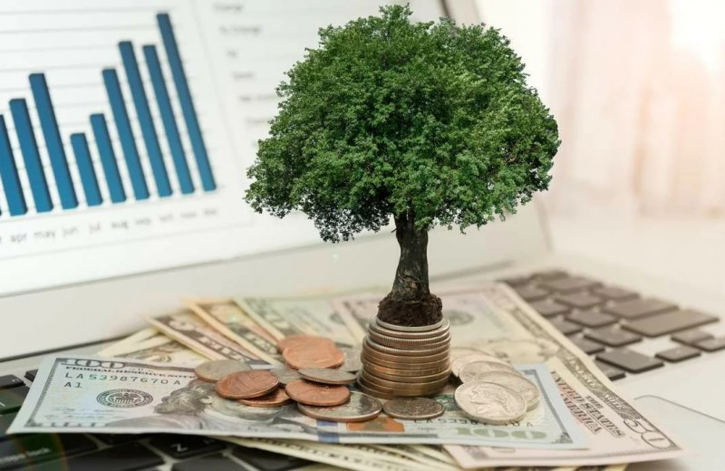 Суверенный инвестиционный цикл