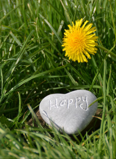 Счастье не за горами