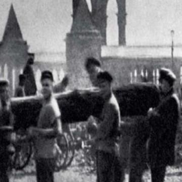 Бревно Ленина