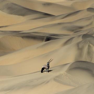 Над великой пустыней Намиб